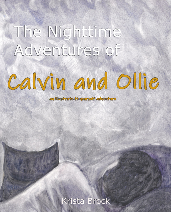 Front cover image of a little boy on a bed with an owl, both our facing inwards.
